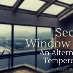 security window film austin